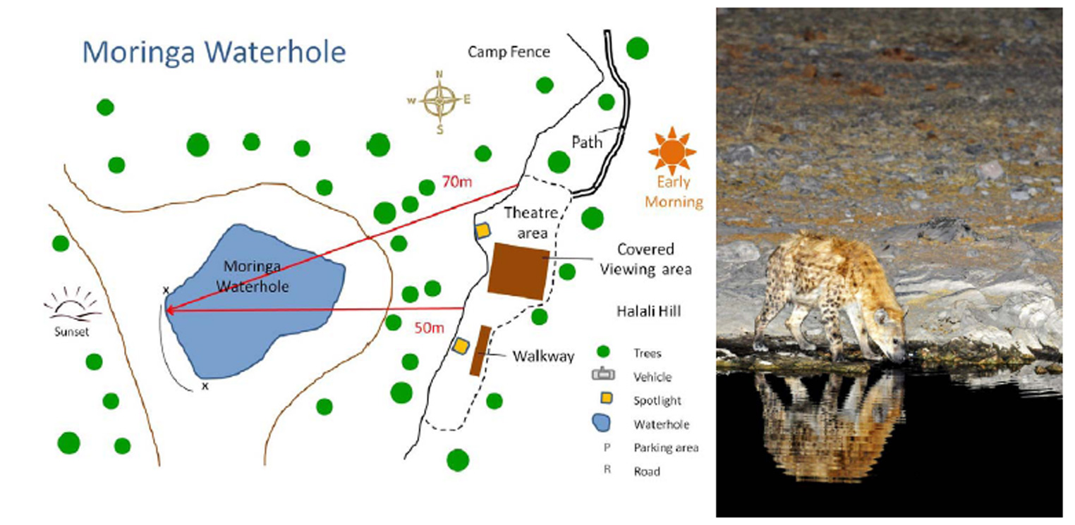 Map and photograph of Moringa Waterhole