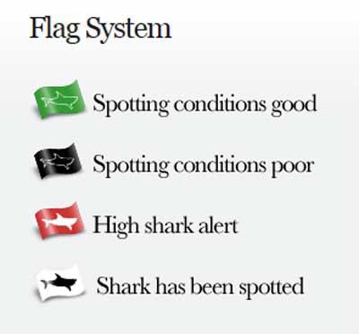 Shark Spotter Flag System
