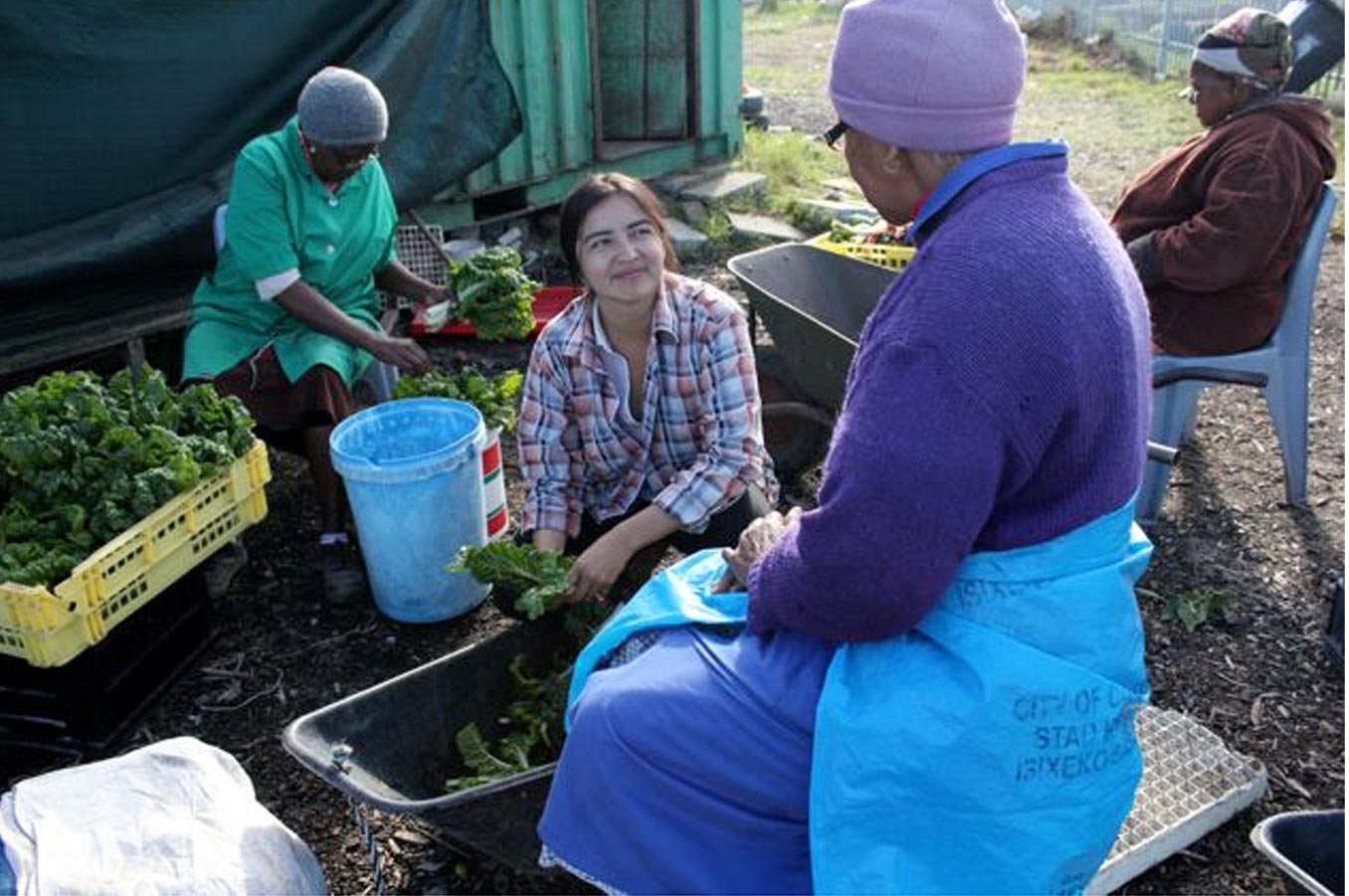 Fizeka Mamas -  a community garden project