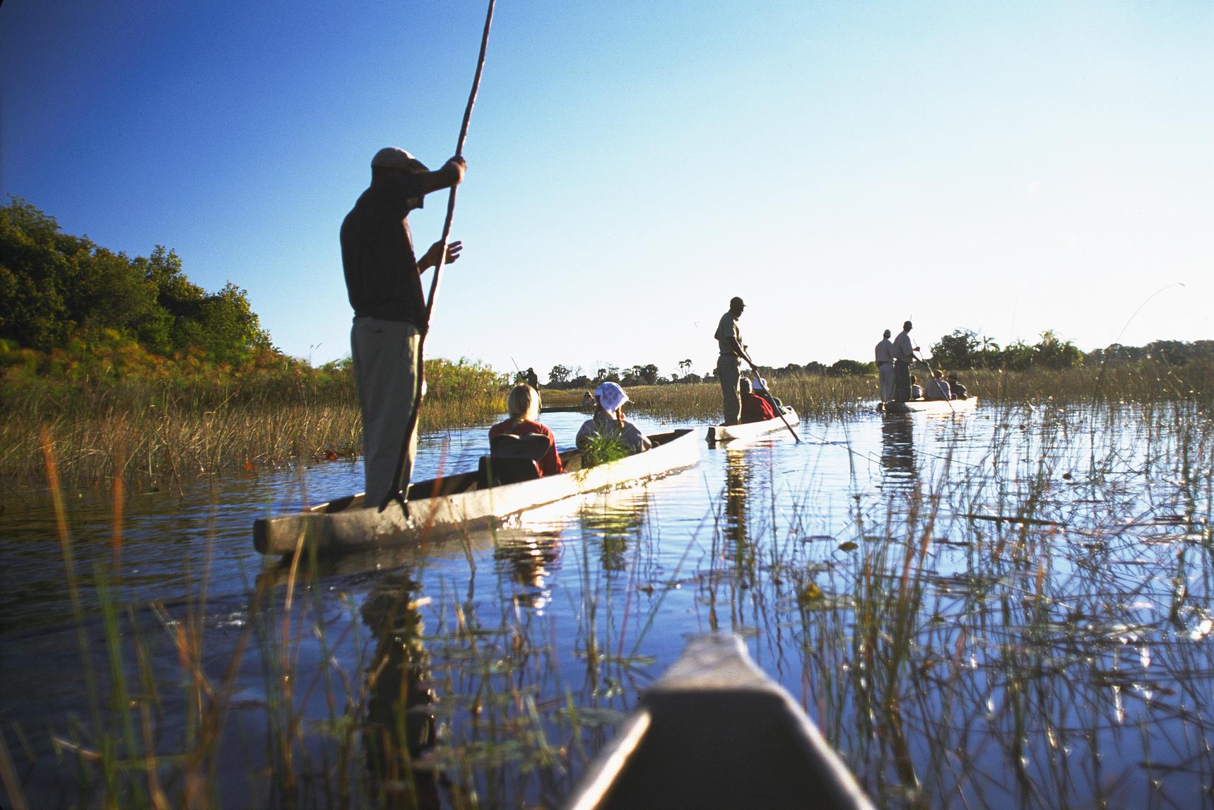 Mekoro Safari in Okavango Delta, Botswana