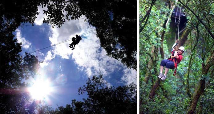 Canopy Tours, Karkloof Gorge