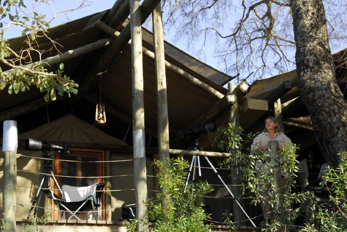 Kruger Park South Africa Photo Guide To Knp Camps And
