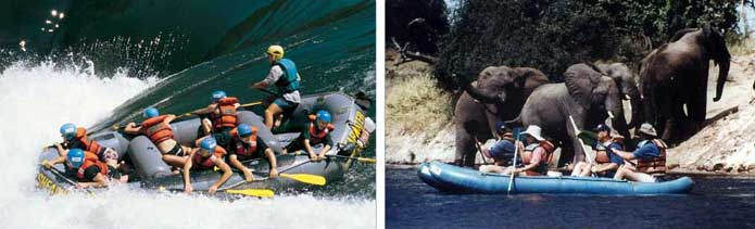 Canoe trip on the Zambezi River